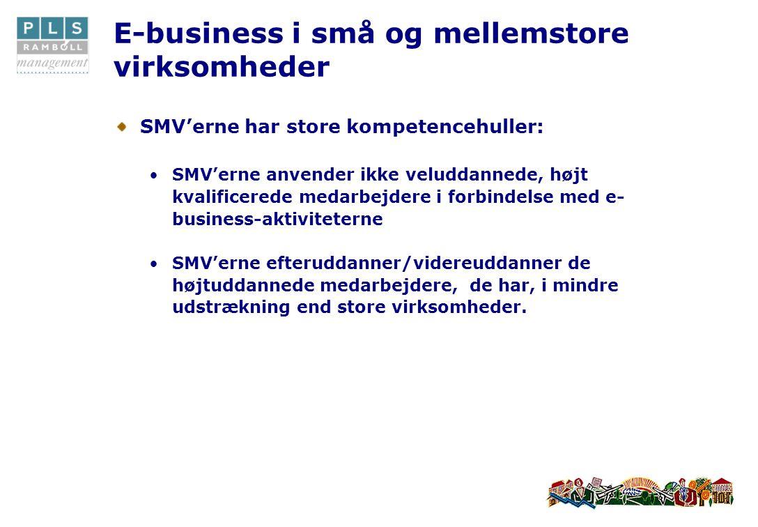E-business i små og mellemstore virksomheder SMV'erne har store kompetencehuller: •SMV'erne anvender ikke veluddannede, højt kvalificerede medarbejdere i forbindelse med e- business-aktiviteterne •SMV'erne efteruddanner/videreuddanner de højtuddannede medarbejdere, de har, i mindre udstrækning end store virksomheder.