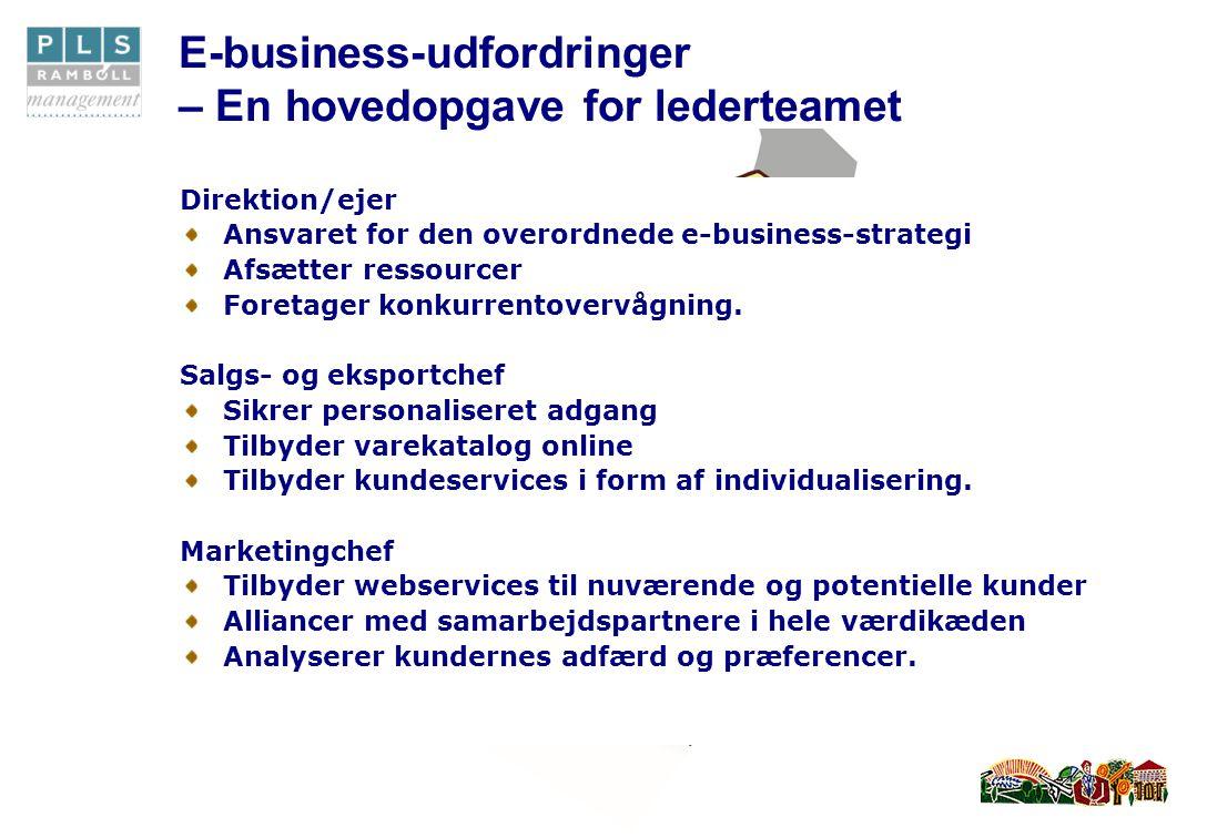Udfordringer Direktion/ejer Ansvaret for den overordnede e-business-strategi Afsætter ressourcer Foretager konkurrentovervågning.