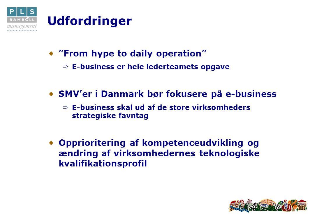 Udfordringer From hype to daily operation  E-business er hele lederteamets opgave SMV'er i Danmark bør fokusere på e-business  E-business skal ud af de store virksomheders strategiske favntag Opprioritering af kompetenceudvikling og ændring af virksomhedernes teknologiske kvalifikationsprofil