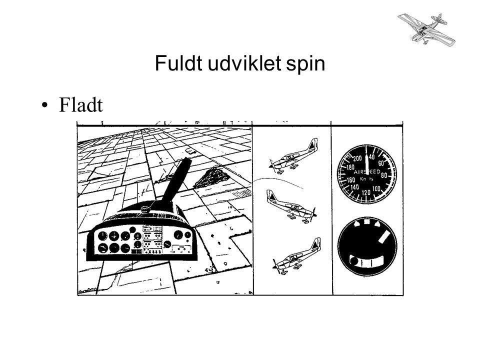 Fuldt udviklet spin •Fladt