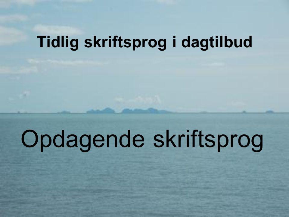 Ida Marie Holm Tidlig skriftsprog i dagtilbud 11.11.2010 42 Skriveredskaberne er let tilgængelige •Let adgang til papir og skrive- og tegneredskaber