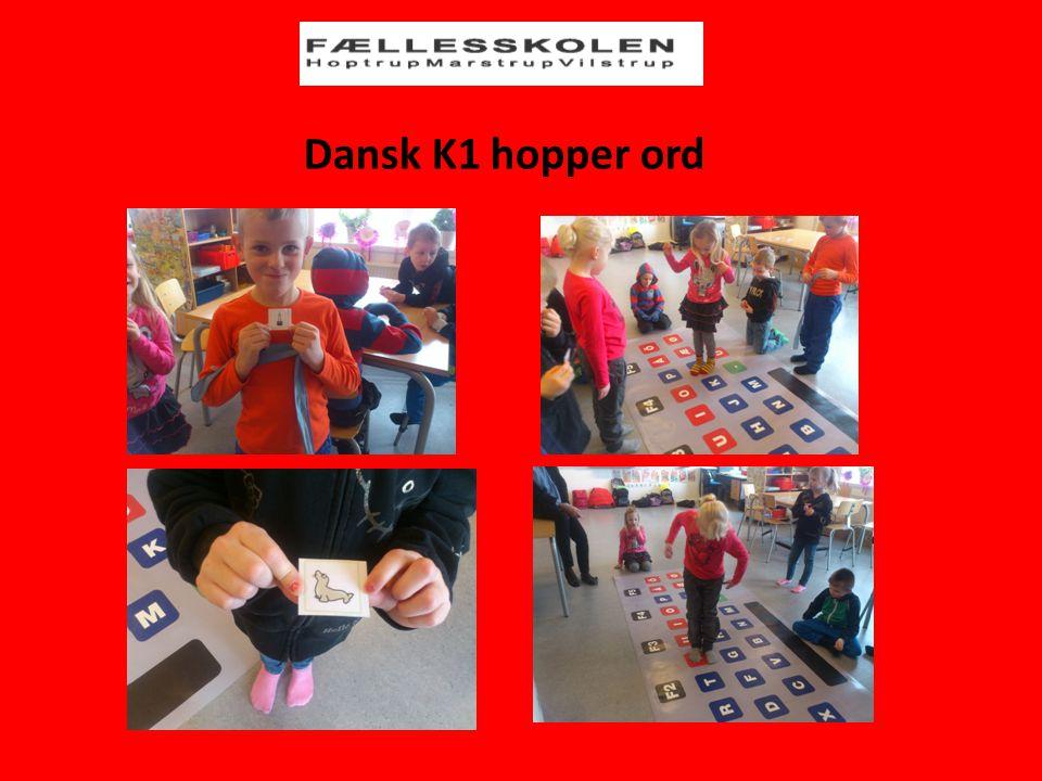 Dansk K1 hopper ord