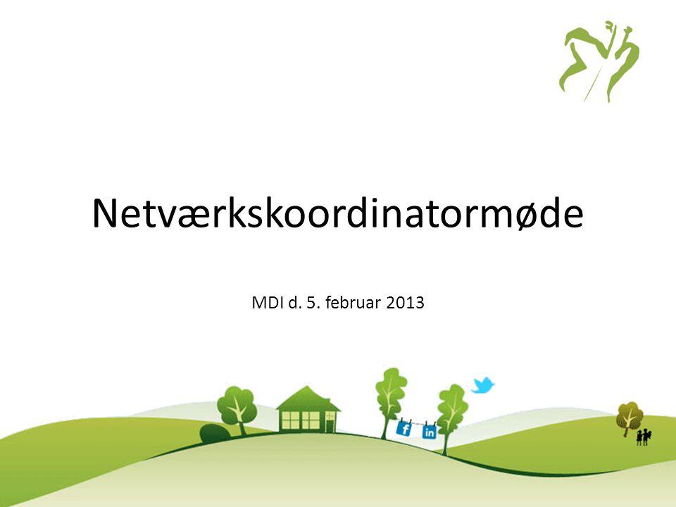 Netværkskoordinatormøde MDI d. 5. februar 2013