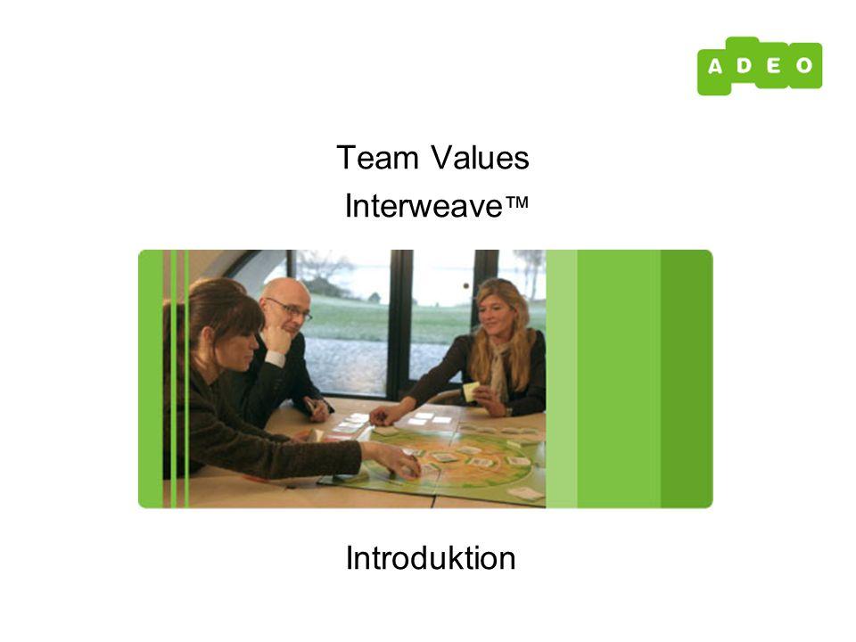 Introduktion Team Values Interweave ™