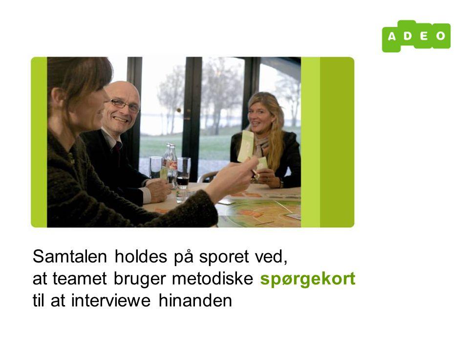 Samtalen holdes på sporet ved, at teamet bruger metodiske spørgekort til at interviewe hinanden