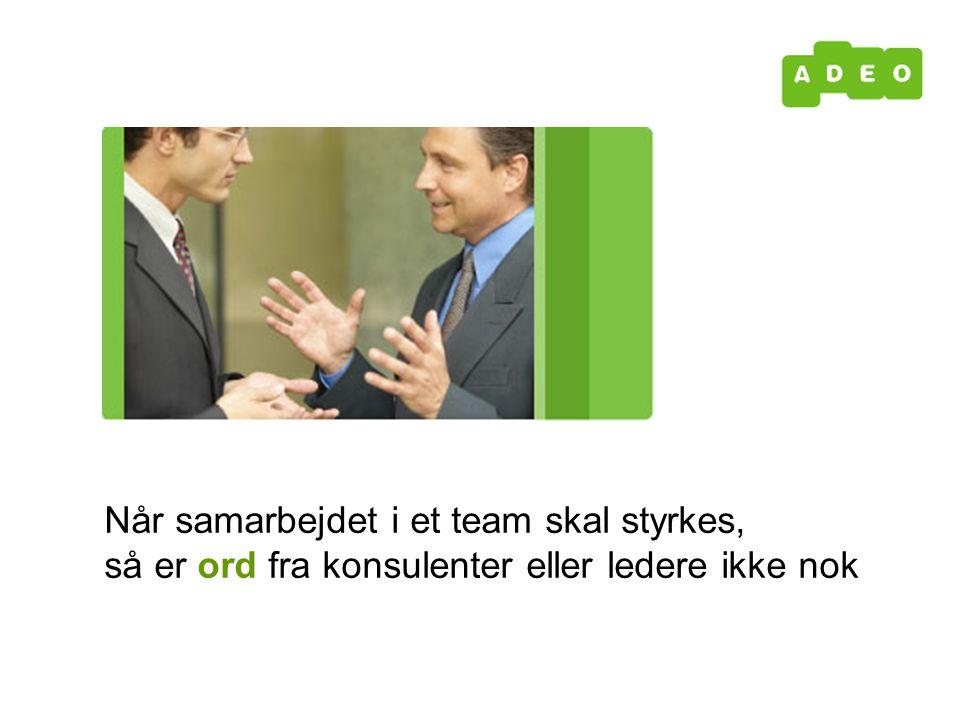 Når samarbejdet i et team skal styrkes, så er ord fra konsulenter eller ledere ikke nok