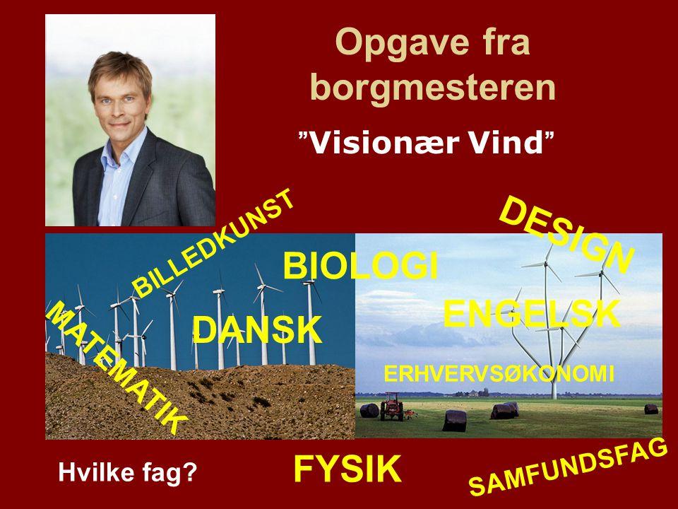 Profilere Fredericia i forbindelse med Klima- topmødet: Som en kreativ, grøn og nytænkende kommune med fokus på økonomi og udvikling.