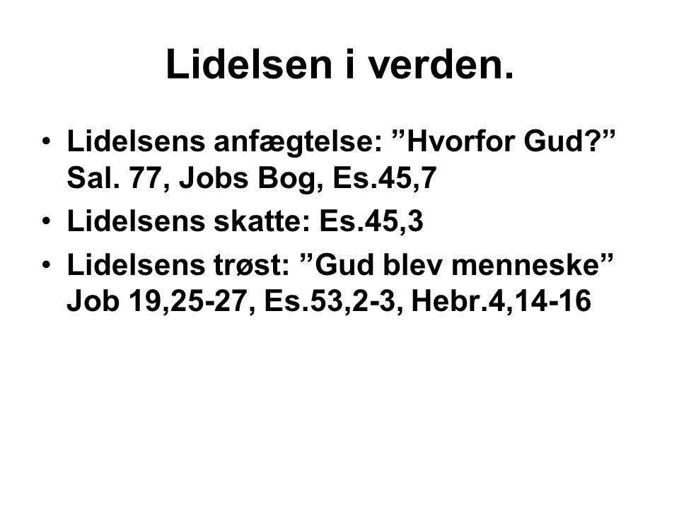 """Lidelsen i verden. •Lidelsens anfægtelse: """"Hvorfor Gud?"""" Sal. 77, Jobs Bog, Es.45,7 •Lidelsens skatte: Es.45,3 •Lidelsens trøst: """"Gud blev menneske"""" J"""