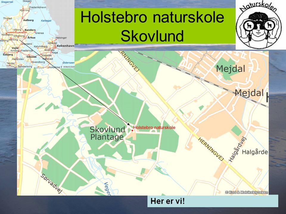 2 Holstebro naturskole Skovlund Her er vi!