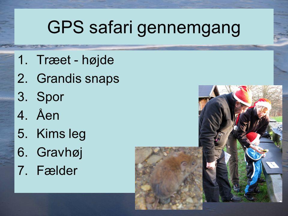 GPS safari gennemgang 1.Træet - højde 2.Grandis snaps 3.Spor 4.Åen 5.Kims leg 6.Gravhøj 7.Fælder