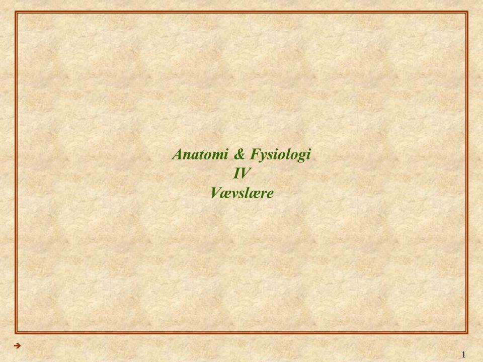1 Anatomi & Fysiologi IV Vævslære 