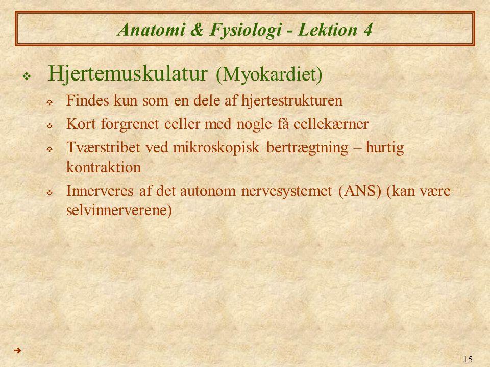 """Pr�sentation """"1 Anatomi & Fysiologi IV V�vsl�re ?. 2 Anatomi ..."""