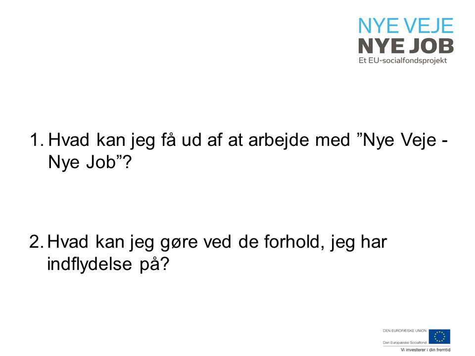1.Hvad kan jeg få ud af at arbejde med Nye Veje - Nye Job .