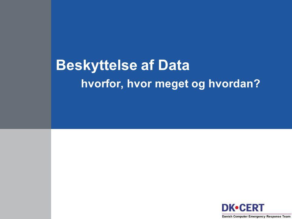 Beskyttelse af Data hvorfor, hvor meget og hvordan