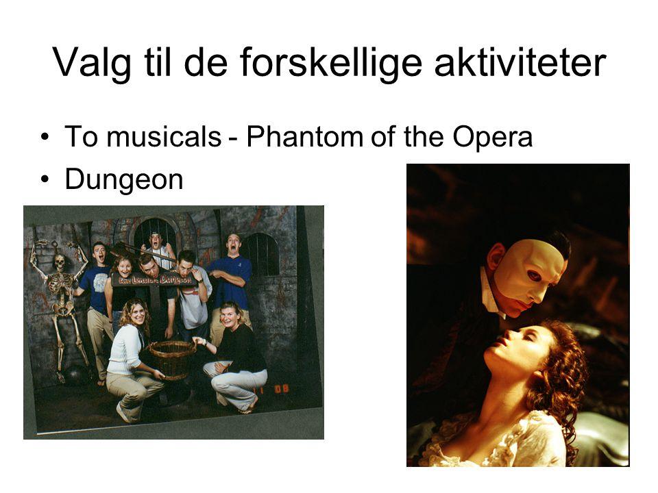 Valg til de forskellige aktiviteter •To musicals - Phantom of the Opera •Dungeon