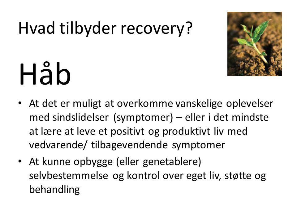 Hvad tilbyder recovery.