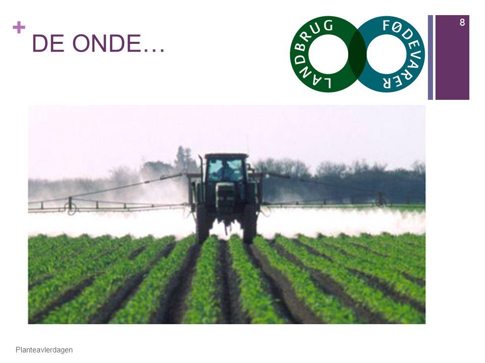 + DE ONDE… Planteavlerdagen 8