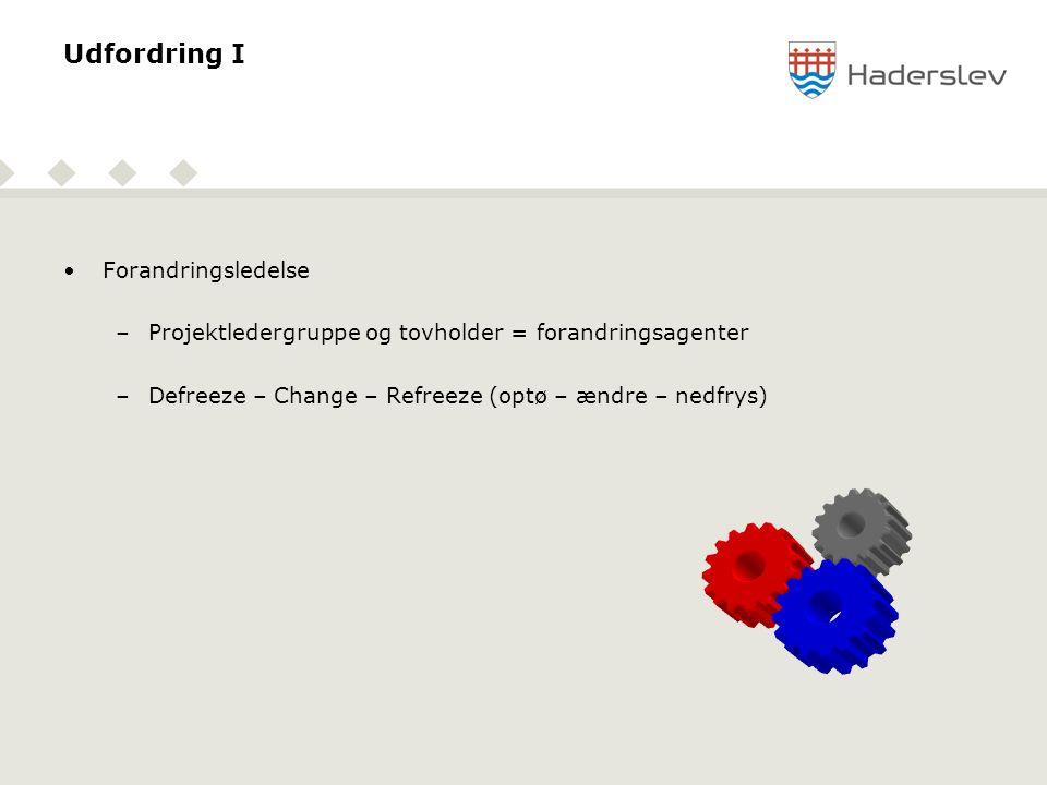 Udfordring I •Forandringsledelse –Projektledergruppe og tovholder = forandringsagenter –Defreeze – Change – Refreeze (optø – ændre – nedfrys)