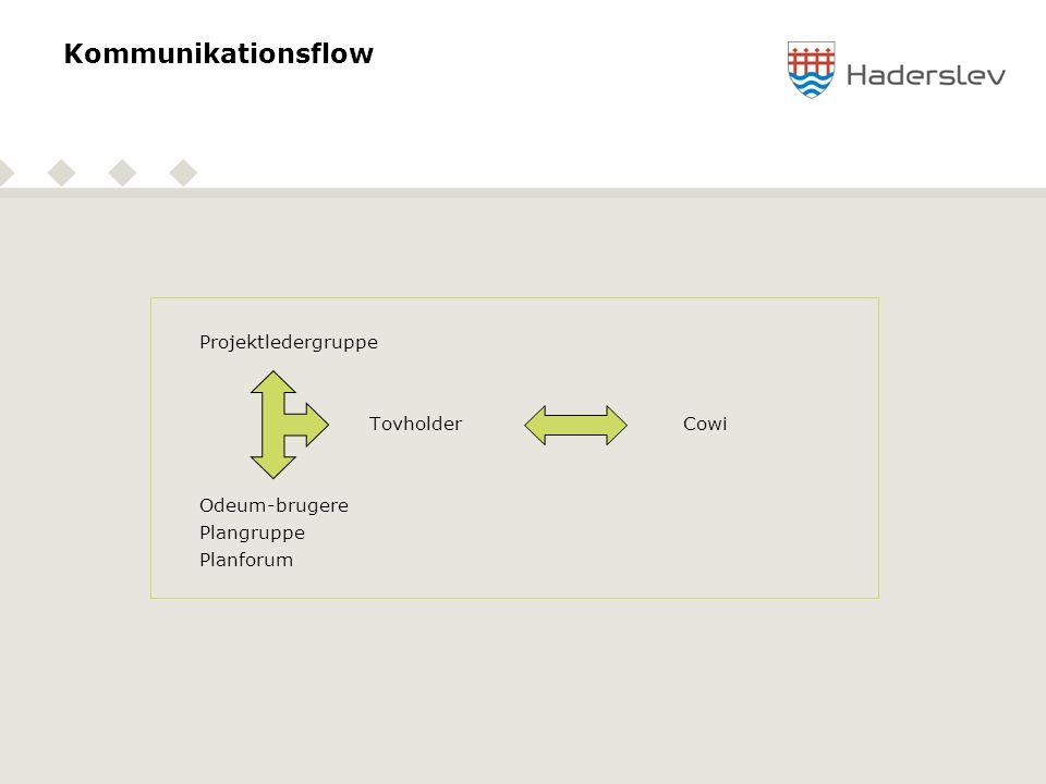 Kommunikationsflow Projektledergruppe TovholderCowi Odeum-brugere Plangruppe Planforum