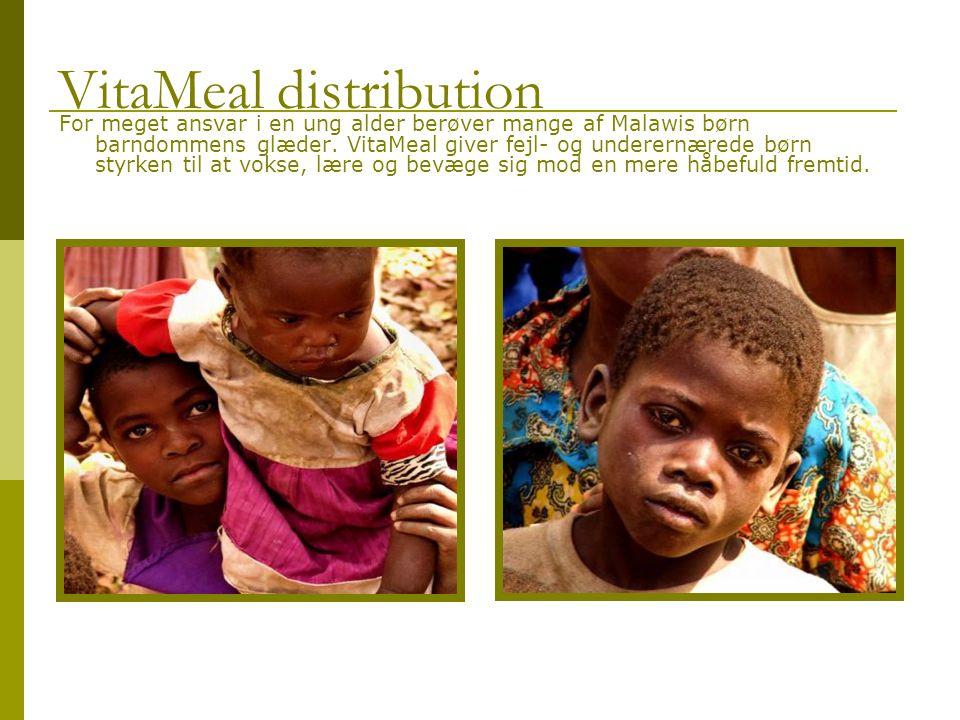 For meget ansvar i en ung alder berøver mange af Malawis børn barndommens glæder.
