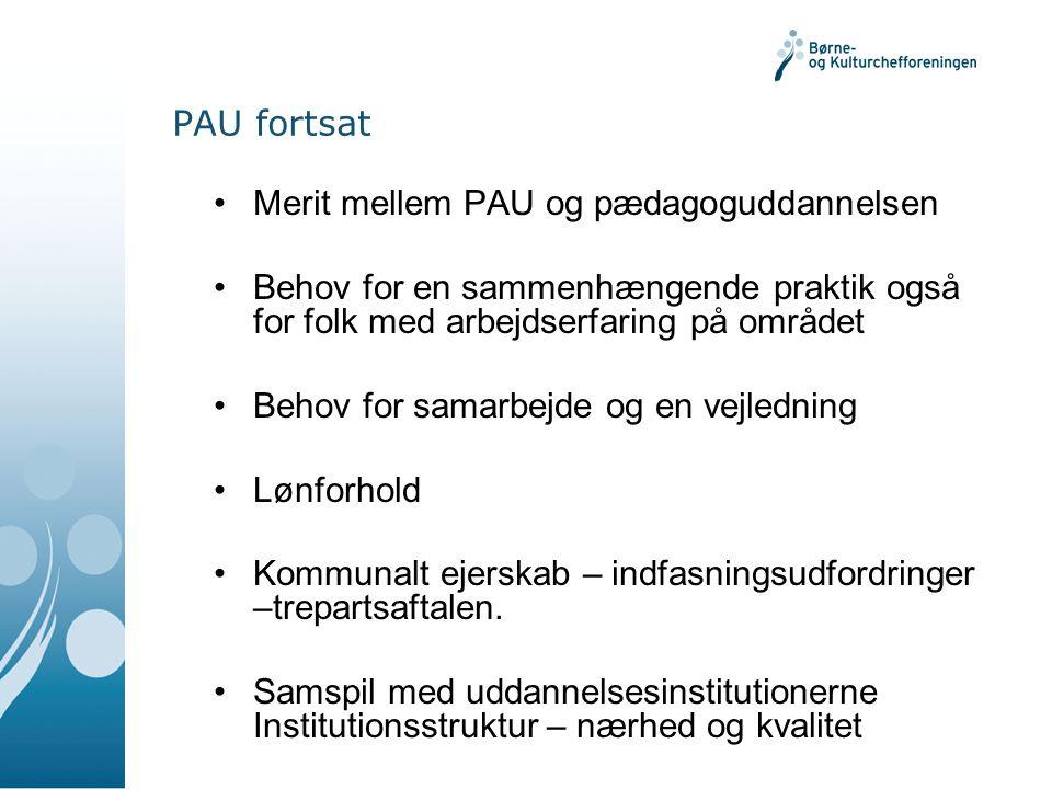 PAU fortsat •Merit mellem PAU og pædagoguddannelsen •Behov for en sammenhængende praktik også for folk med arbejdserfaring på området •Behov for samarbejde og en vejledning •Lønforhold •Kommunalt ejerskab – indfasningsudfordringer –trepartsaftalen.