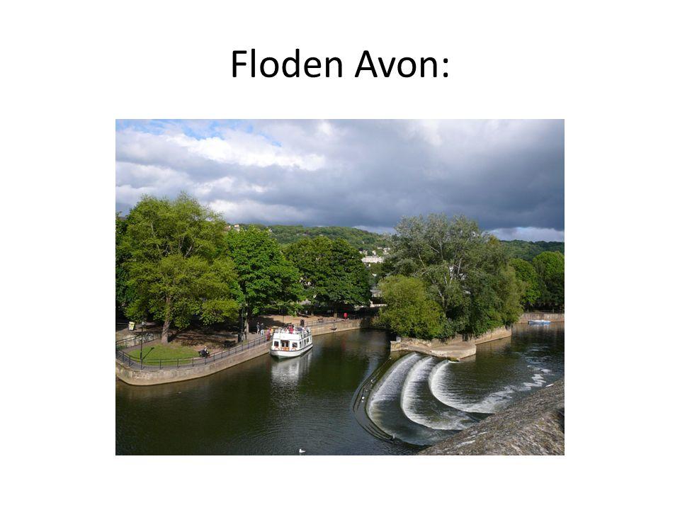 Floden Avon: