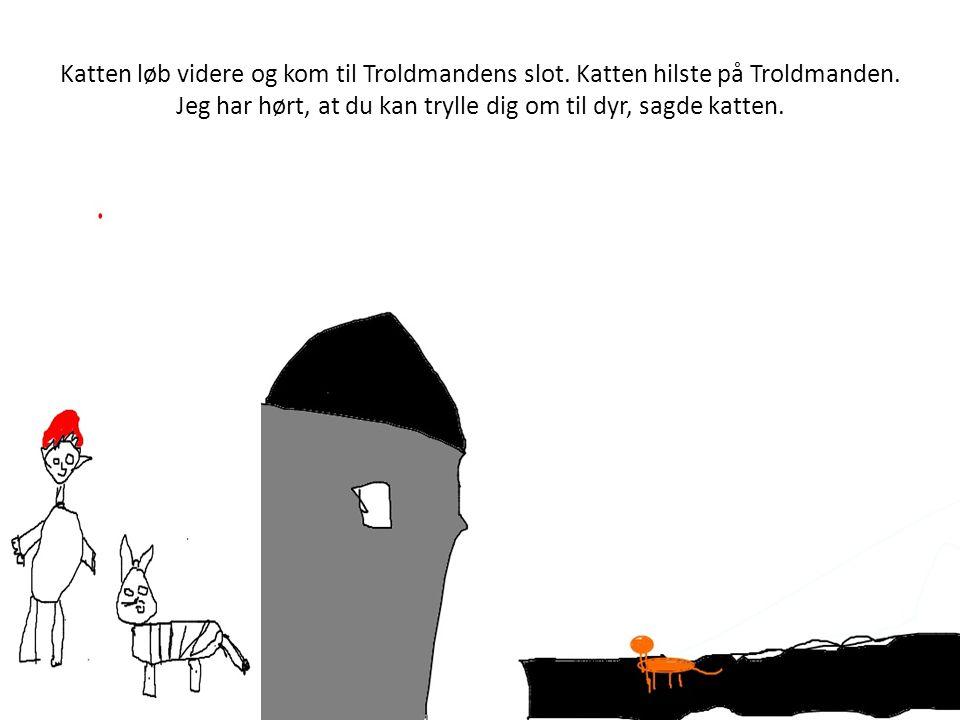 Katten løb videre og kom til Troldmandens slot.Katten hilste på Troldmanden.
