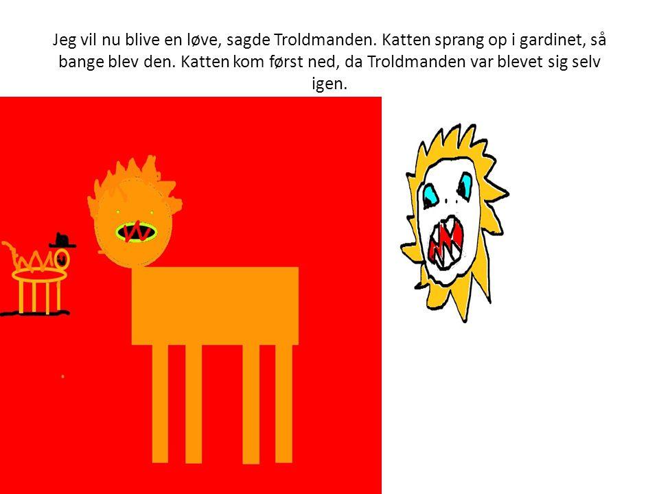 Jeg vil nu blive en løve, sagde Troldmanden.Katten sprang op i gardinet, så bange blev den.