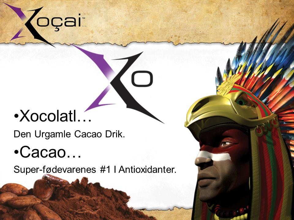 •Xocolatl… Den Urgamle Cacao Drik. •Cacao… Super-fødevarenes #1 I Antioxidanter.