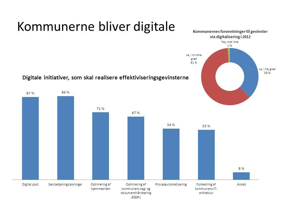 Kommunerne bliver digitale