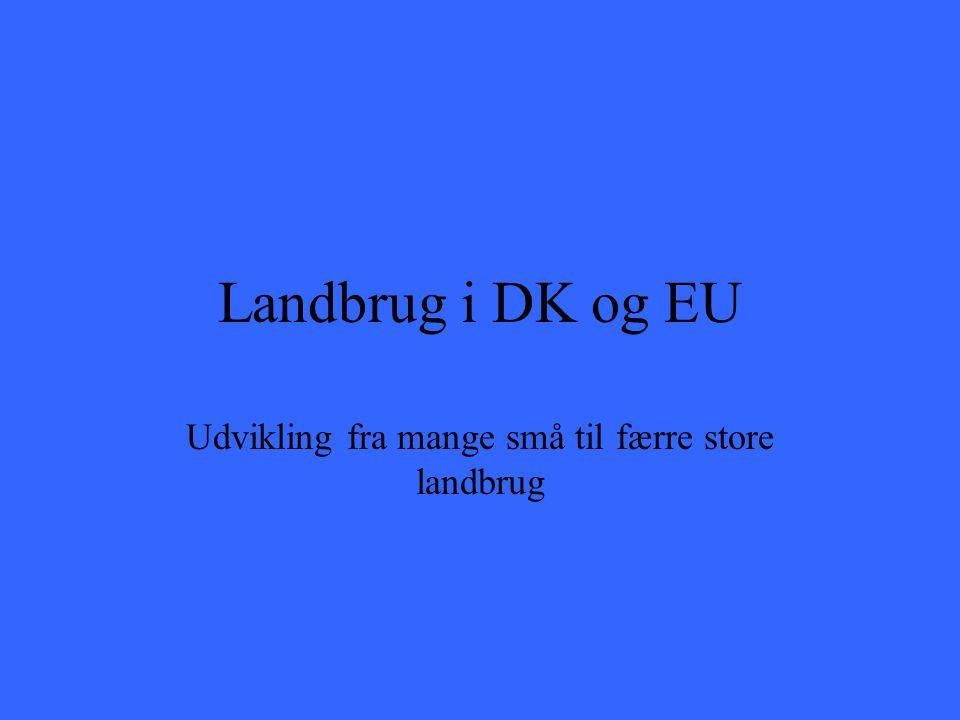 Landbrug i DK og EU Udvikling fra mange små til færre store landbrug