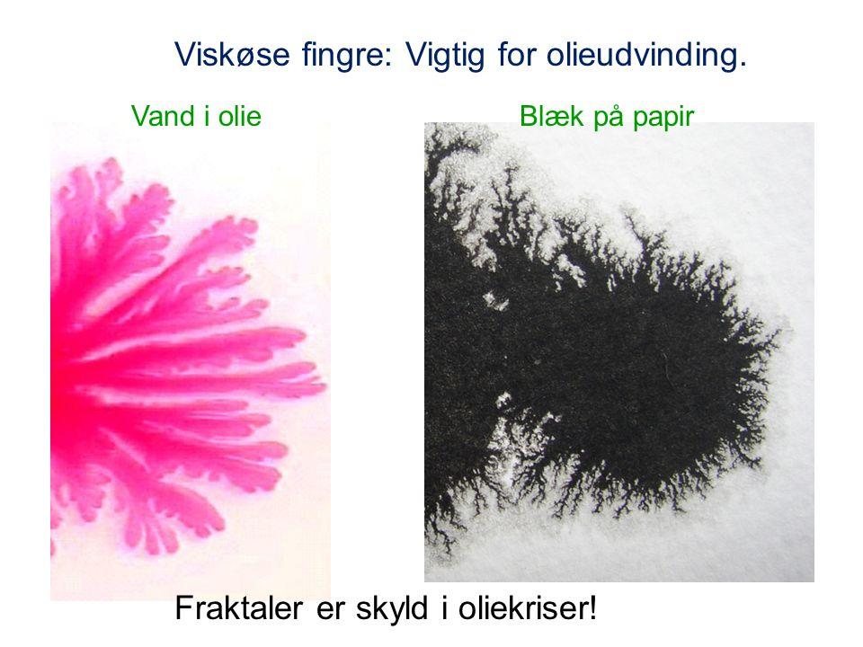 Viskøse fingre: Vigtig for olieudvinding. Vand i olieBlæk på papir Fraktaler er skyld i oliekriser!