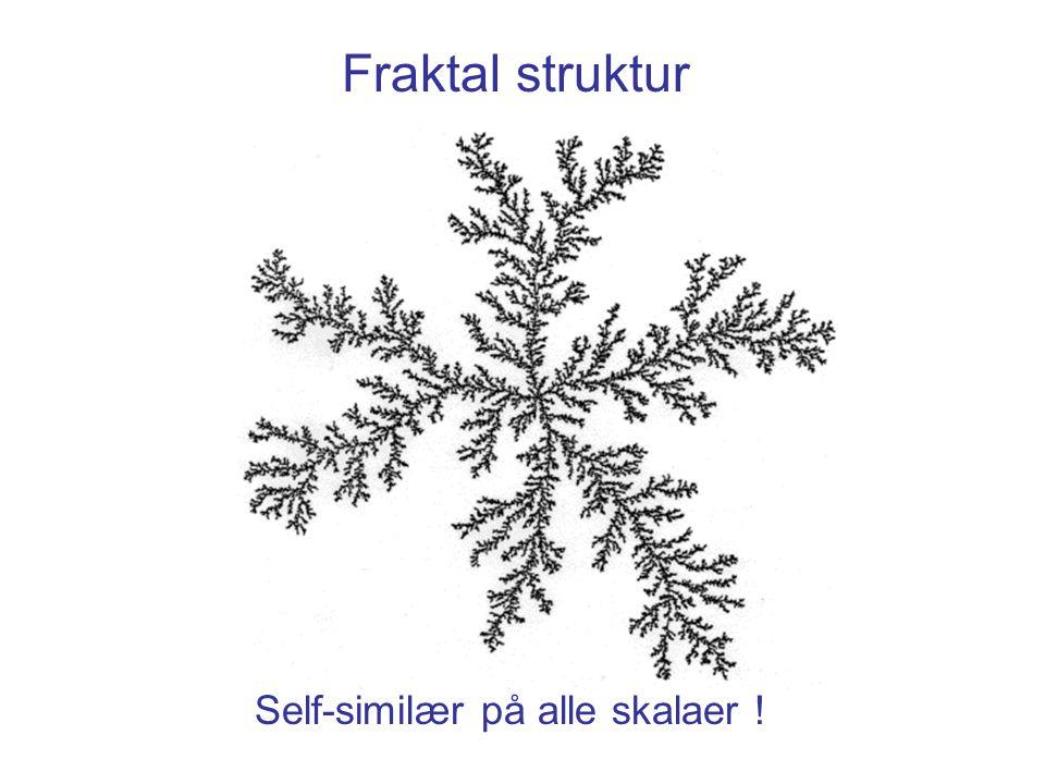 Fraktal struktur Self-similær på alle skalaer !