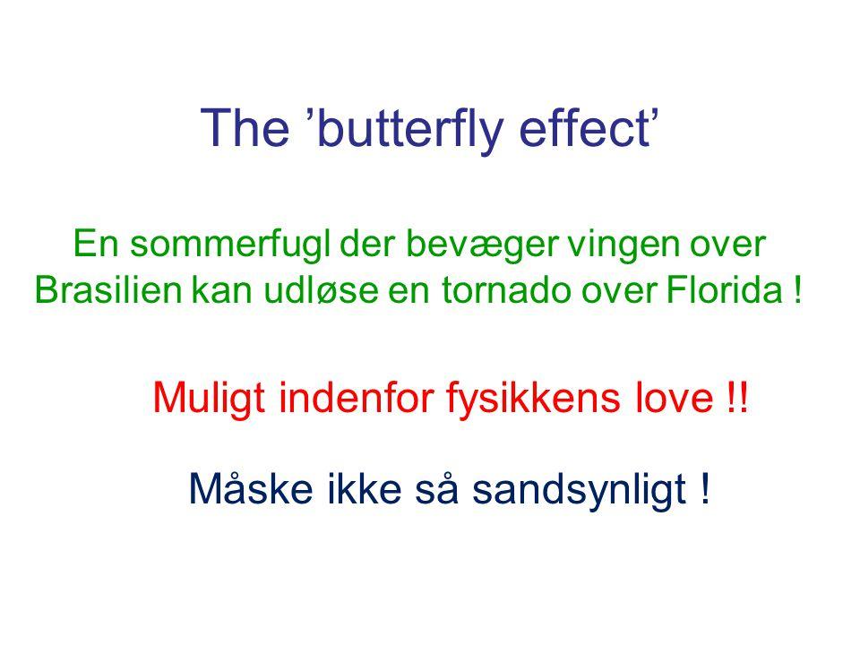 The 'butterfly effect' En sommerfugl der bevæger vingen over Brasilien kan udløse en tornado over Florida .