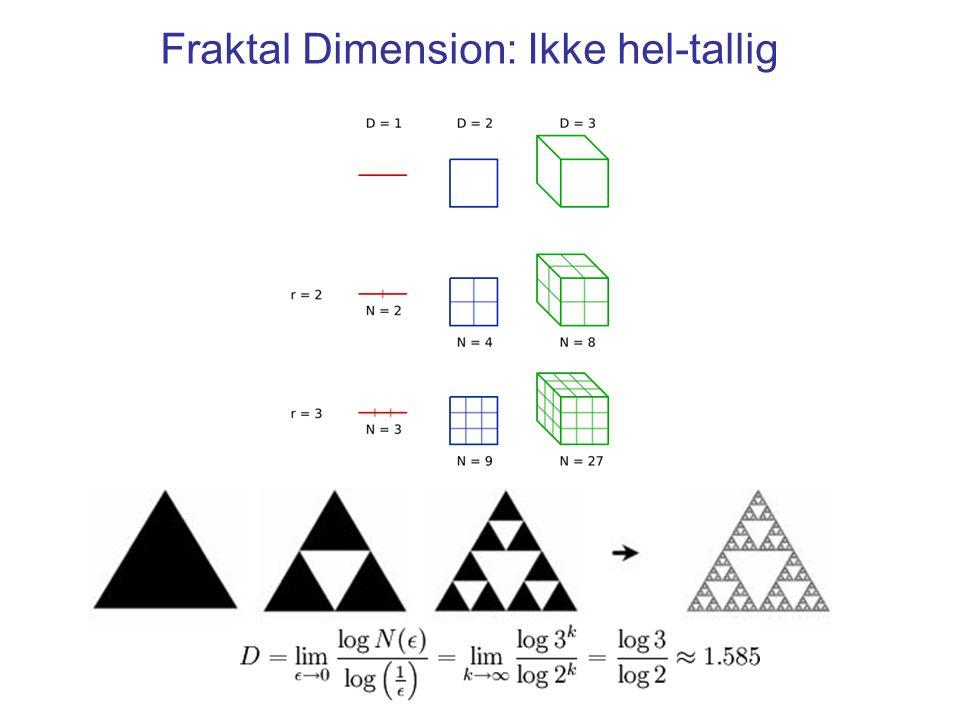 Fraktal Dimension: Ikke hel-tallig