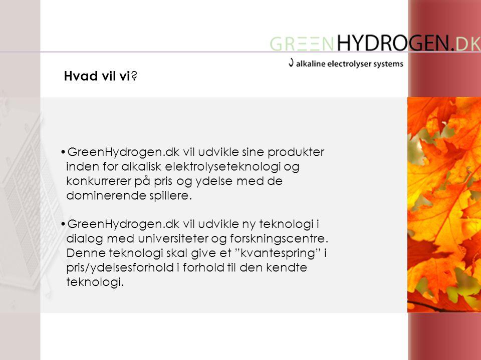 •GreenHydrogen.dk vil udvikle sine produkter inden for alkalisk elektrolyseteknologi og konkurrerer på pris og ydelse med de dominerende spillere.