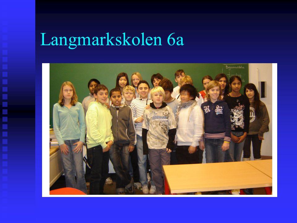 Langmarkskolen 6a