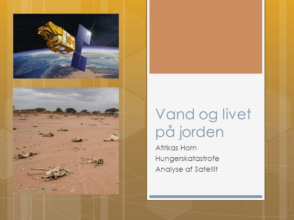 Vand og livet på jorden Afrikas Horn Hungerskatastrofe Analyse af Satellit