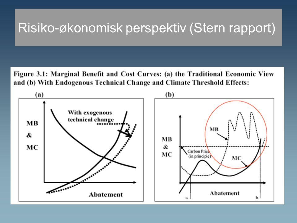 Risiko-økonomisk perspektiv (Stern rapport)