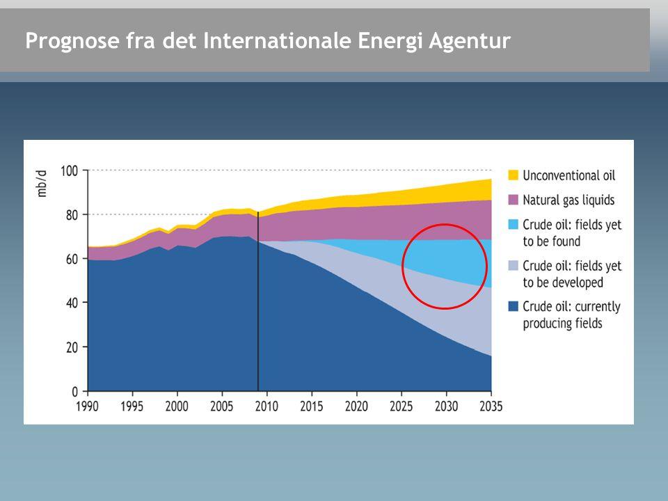 Prognose fra det Internationale Energi Agentur