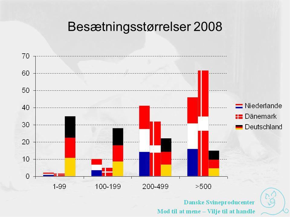 Besætningsstørrelser 2008