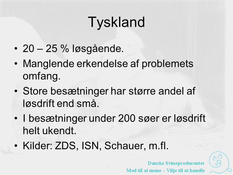 Tyskland •20 – 25 % løsgående. •Manglende erkendelse af problemets omfang.