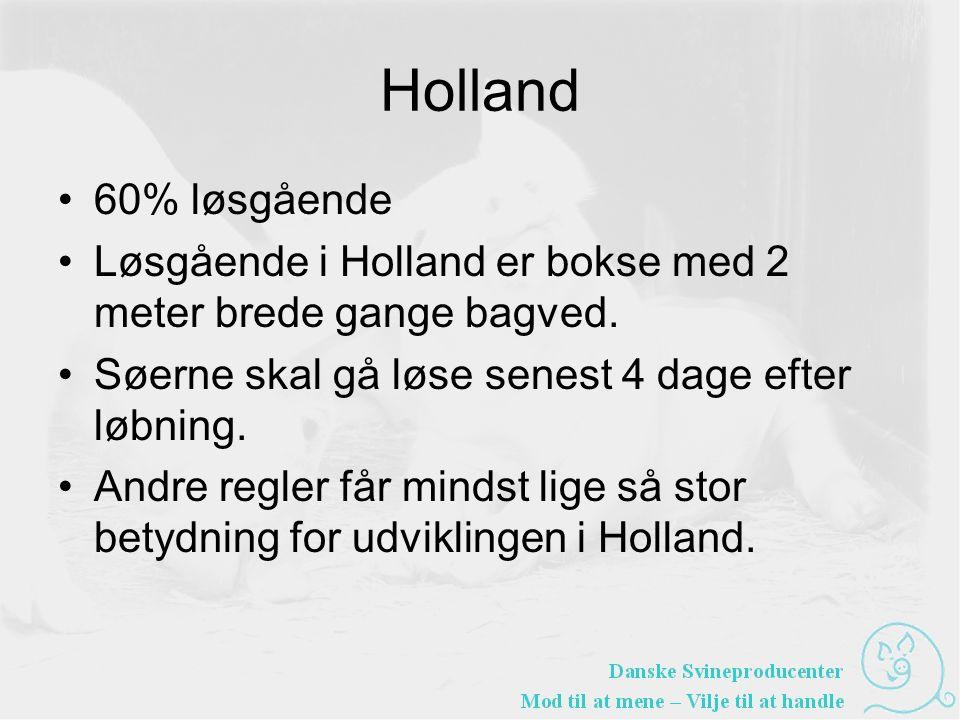 Holland •60% løsgående •Løsgående i Holland er bokse med 2 meter brede gange bagved.