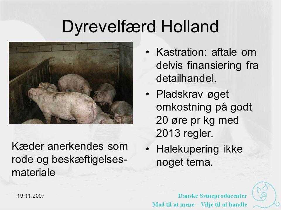 Dyrevelfærd Holland •Kastration: aftale om delvis finansiering fra detailhandel.