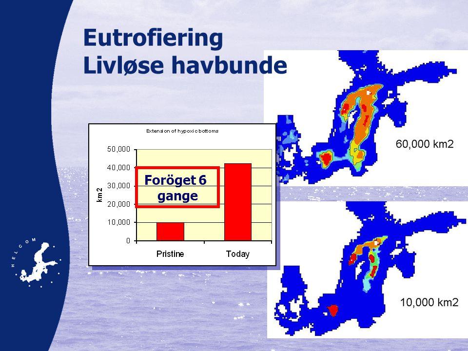 Eutrofiering Livløse havbunde Foröget 6 gange