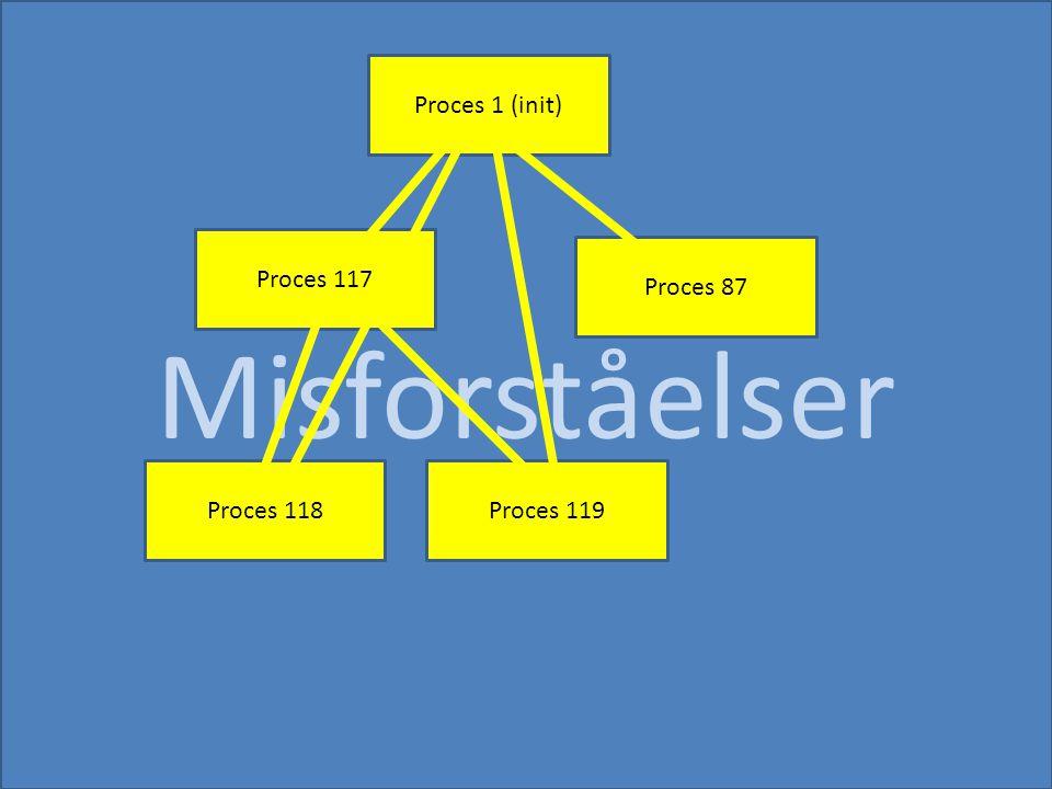 Misforståelser Proces 117 Proces 1 (init) Proces 118 Proces 87 Proces 119