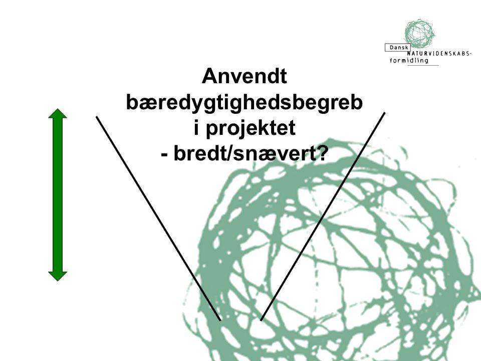 Anvendt bæredygtighedsbegreb i projektet - bredt/snævert