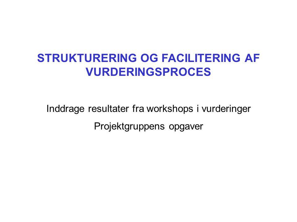 STRUKTURERING OG FACILITERING AF VURDERINGSPROCES Inddrage resultater fra workshops i vurderinger Projektgruppens opgaver