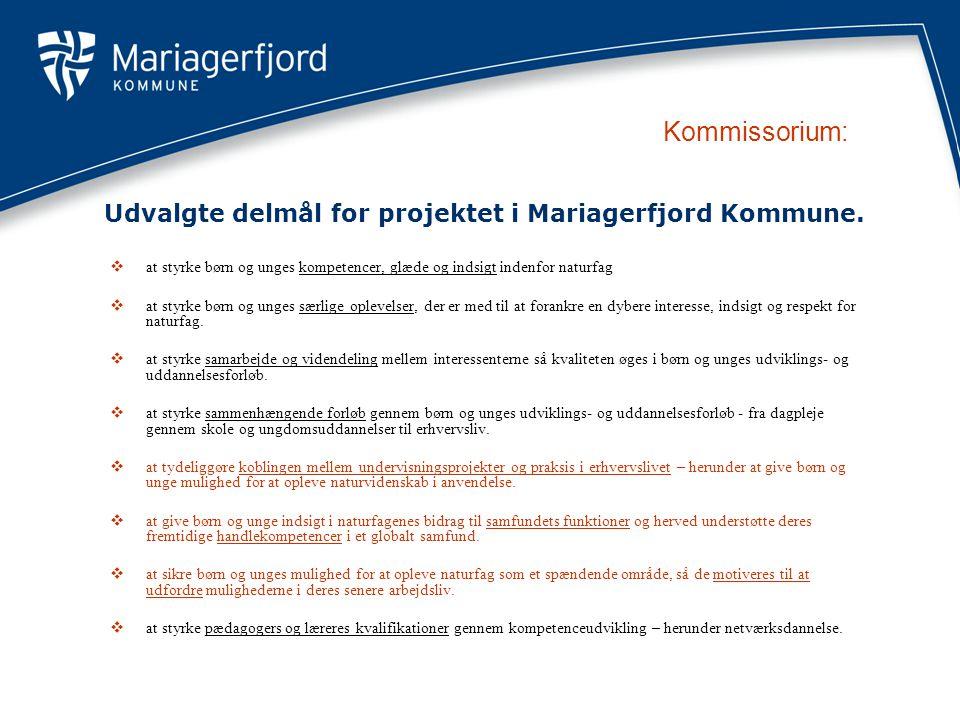 Udvalgte delmål for projektet i Mariagerfjord Kommune.