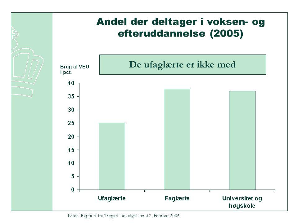 Andel der deltager i voksen- og efteruddannelse (2005) Brug af VEU i pct.